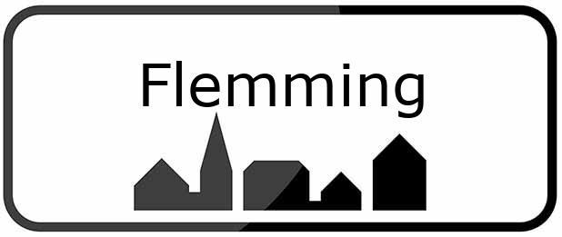 8762 Flemming