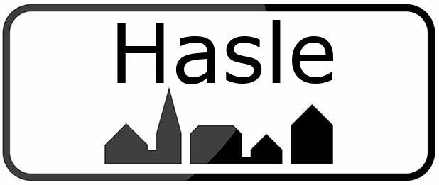 3790 Hasle